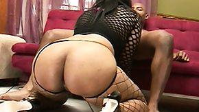 Fishnet, Babe, BBW, Big Black Cock, Big Cock, Big Tits