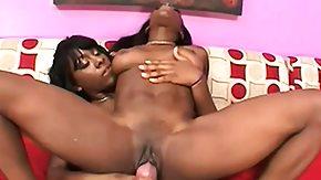 Ebony Dildo, Adorable, Allure, Black, Black Lesbian, Dildo