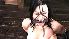 Nipple Clamp, BDSM, Bound, Brunette, Fetish, Fingering